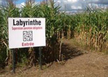 labyrinthe_cidrerie_lariviere